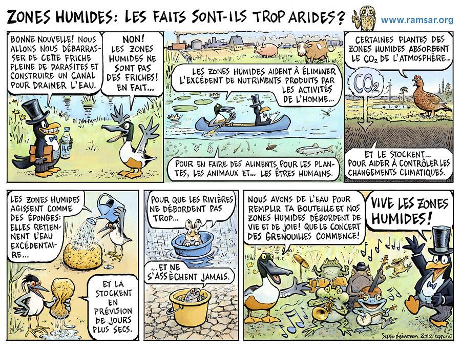 Fonctions des zones humides (Ramsar, 2012)